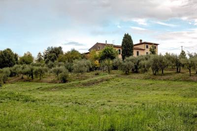 AZ-Italian-Properties---House-for-Sale-Tuscany-Lucca--1-