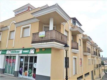 1147-apartment-for-sale-in-arboleas-84071674