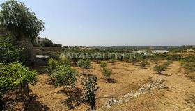 Image No.10-Ferme de 4 chambres à vendre à Antalya