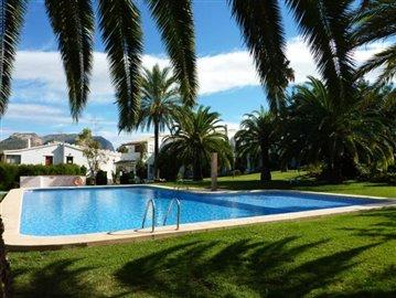 Garten-und-Pool