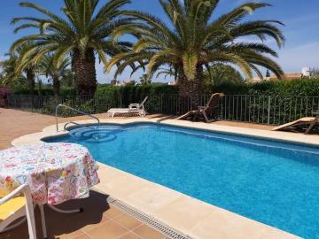 LS-439-pool-Palmen-Terrasse