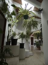 Image No.12-Villa / Détaché de 4 chambres à vendre à Antigua