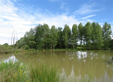 lake-b-reference-70505-640x467