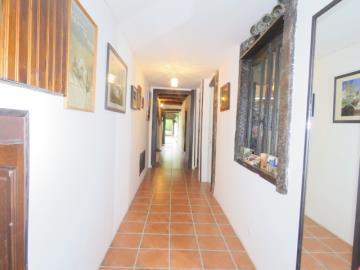 Hallway--Reference-21802
