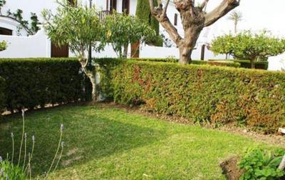 12-Patricia-25-front-Garden-1600x1200-1-1170x738