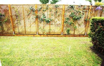 14-Patricia-25-Back-Garden-1600x1200-1170x738