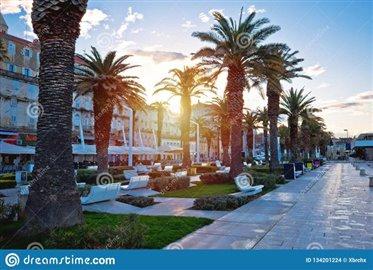 city-split-riva-waterfront-sunrise-view-dalmatia-croatia-city-split-riva-waterfront-sunrise-view-134201224