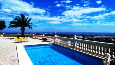 pool-with-palm-and-sea-view