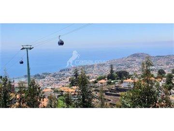1 - Funchal, Plot
