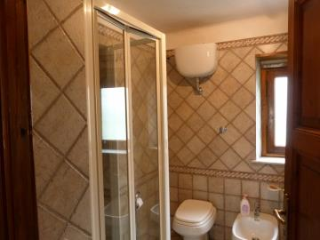 bathroom-with-shower