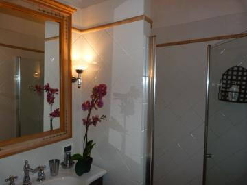 shower-room-downstairs