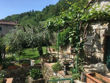 Great-garden-shot