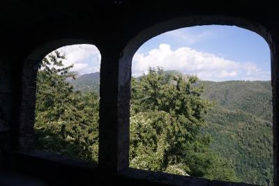 Summer-Terrace-View