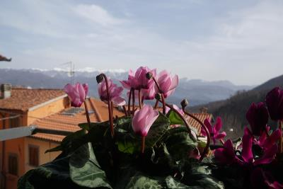 View-to-Appenines