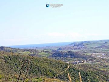 Dogliola-Abruzzo