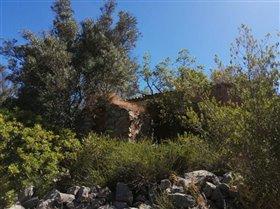 Image No.10-Terrain à vendre à Sao Clemente