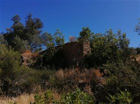 Image No.11-Terrain à vendre à Sao Clemente