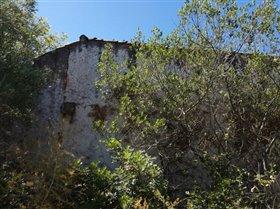 Image No.1-Terrain à vendre à Sao Clemente