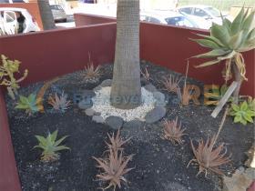 Image No.16-Villa de 2 chambres à vendre à Corralejo