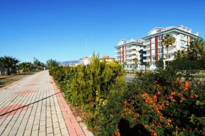 turkuaz-residence-kestel-alanya--4-