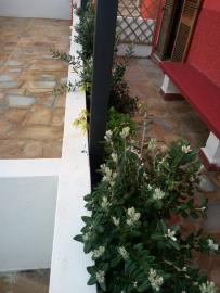 Residenze-Leone-Quattro-giardino--1-