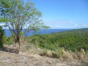 Sea-Views-from-the-Hill-top-after-a-hike