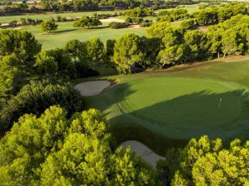 Lo-Romero-Golf-10