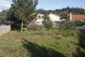 Image No.3-Terrain à vendre à Ferreira do Zêzere