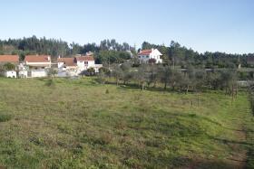 Image No.5-Terrain à vendre à Ferreira do Zêzere