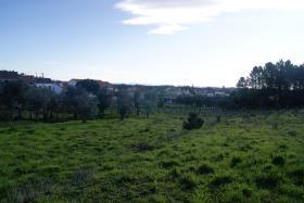 Image No.6-Terrain à vendre à Ferreira do Zêzere