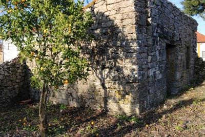 Anexo-pedra-e-arvores-Fruto