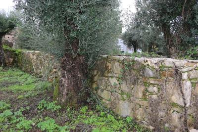 Muros-em-pedra