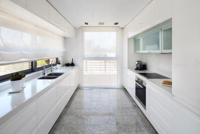Minthis_photo_Callisto_kitchen