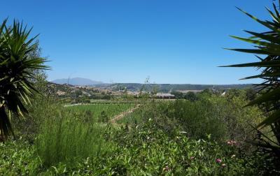 views-1170x738
