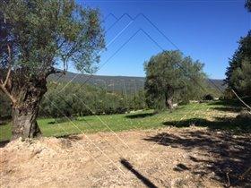 Image No.2-Terre à vendre à Faro City