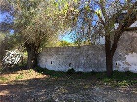 Image No.5-Terre à vendre à Faro City