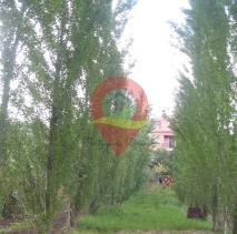 Image No.27-Maison / Villa de 4 chambres à vendre à Almalaguês