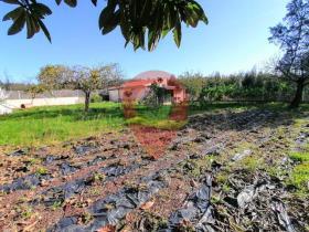Image No.18-Maison de 6 chambres à vendre à Figueiró dos Vinhos