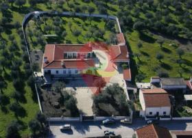 Image No.1-Maison de campagne de 6 chambres à vendre à Nisa