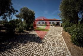 Image No.2-Maison de campagne de 6 chambres à vendre à Nisa