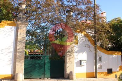 1 - Castelo Branco, Mansion