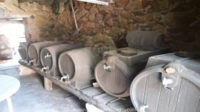 Image No.1-Ferme de 6 chambres à vendre à Figueiró dos Vinhos