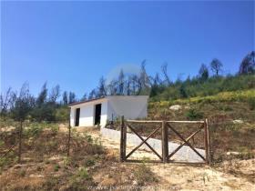 Image No.16-Ferme de 6 chambres à vendre à Oliveira do Hospital