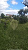 Image No.18-Maison de campagne de 4 chambres à vendre à Cernache do Bonjardim