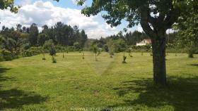 Image No.20-Maison de campagne de 4 chambres à vendre à Cernache do Bonjardim