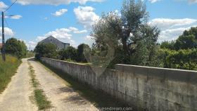 Image No.55-Maison de campagne de 4 chambres à vendre à Cernache do Bonjardim