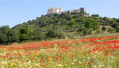 Arta Castle