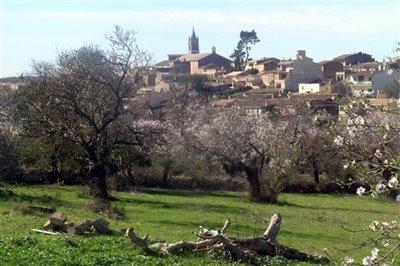 View of Llubi