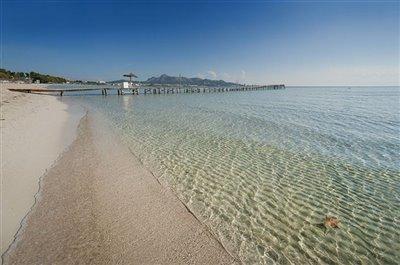 Beach of Port Alcudia 5