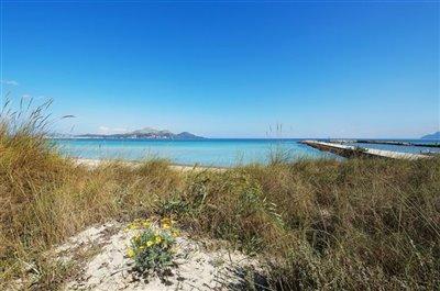 Beach of Playas de Muro 4